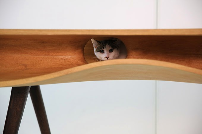 Cat Table 4